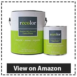 RECOLOR-Paint
